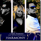 Harmony - Chris Karino